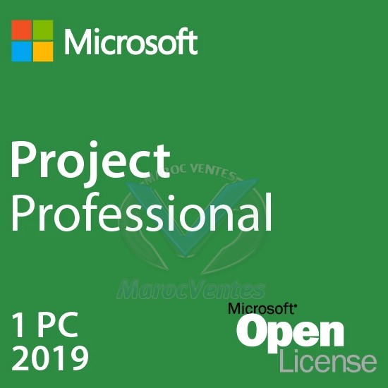 Project Professional 2019 Licence 1 PC avec Project Server CAL H30-05830