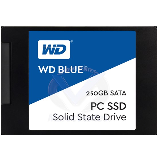 "Disque Flash SSD Interne 2,5"" 250/500 Go & 1To SATA III 100/200/400 ToW WDS250G1B0A"